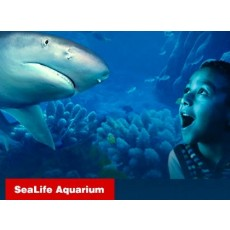 SEA LIFE Aquarium